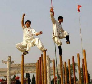 Meihua Quan KungFu Pole Training