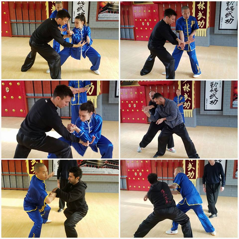 Shifu Yan Jun Qin Na Kung Fu Seminar